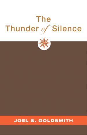The-Thunder-of-Silence