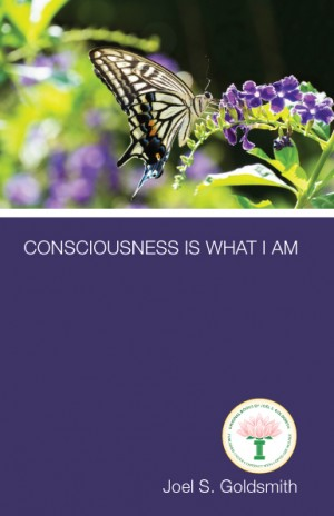 Consciousness Is What I Am cover v1