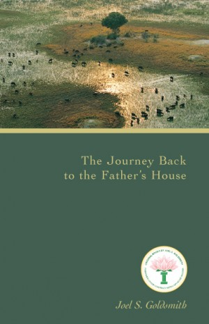 The_Journey_Back_To_The_Father