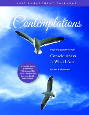 Contemplations 2018 Calendar cover